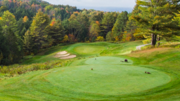 Country Club of Vermont